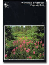 OUT OF STOCK AND UNAVAILABLE Wildflowers of Algonquin Provincial Park